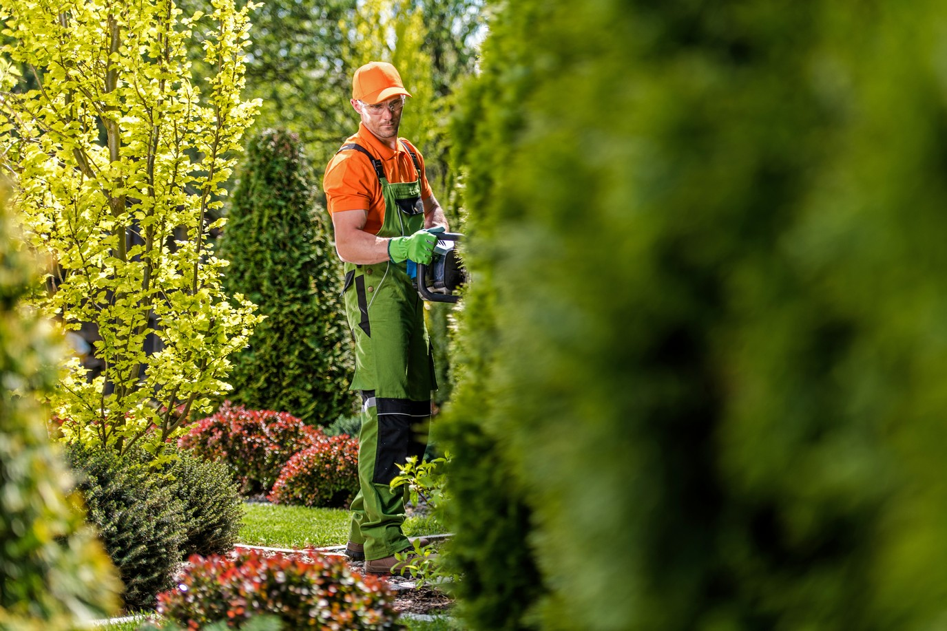 Pflanzen und Pflegearbeiten